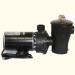 Hayward 1 HP Pump & Motor